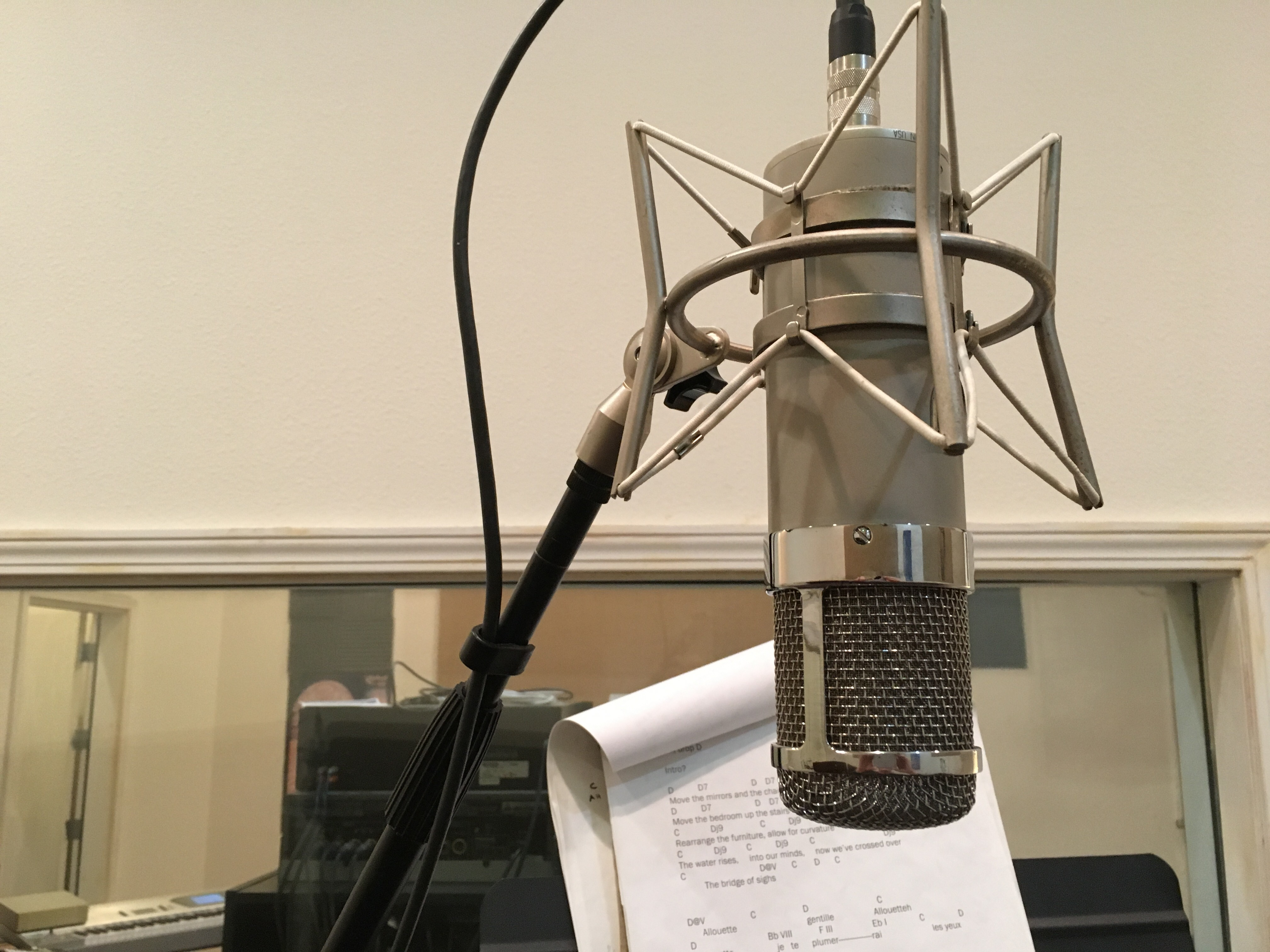 Professional Recording Microphone