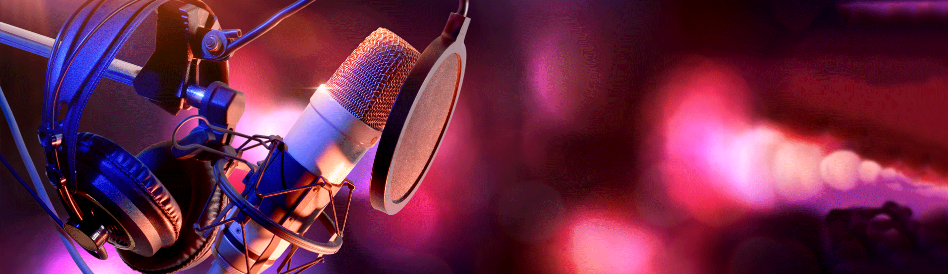 Microphone With Pop Filter and Anti-Vibration Mount